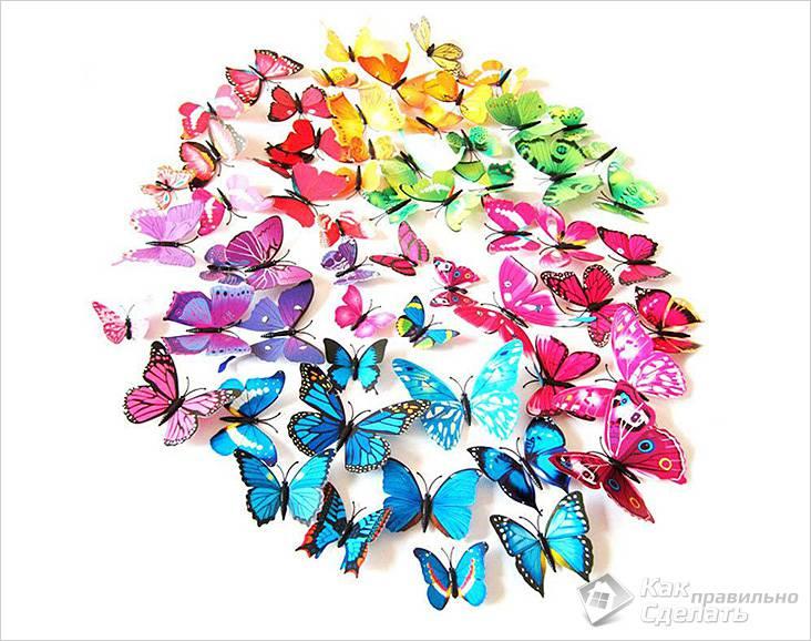 Разноцветные бабочки для оформления стены
