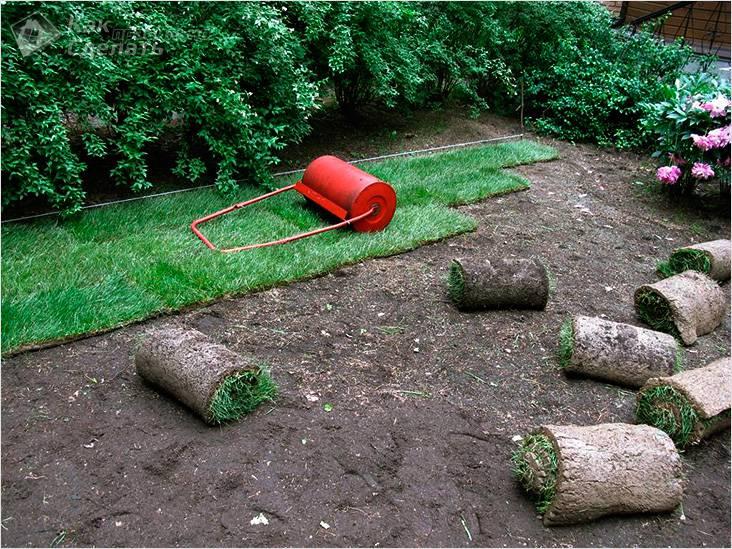 Распределение и утрамбовка газона