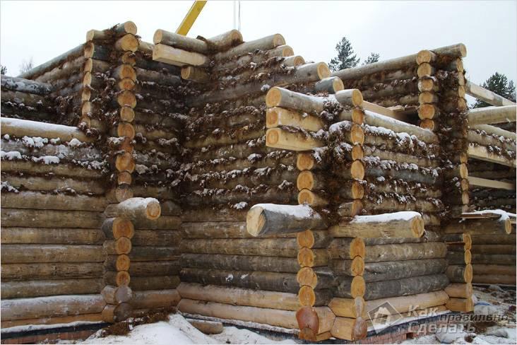 При строительстве дома использовался мох