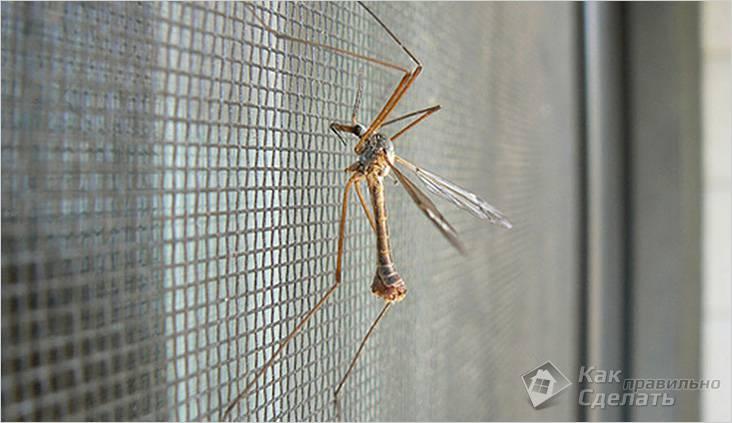 Закройте все ходы для комаров