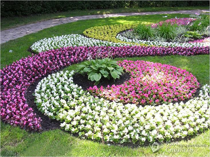 Геометрия цветника