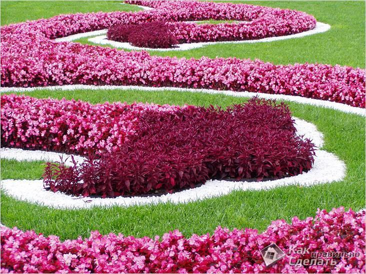 Выбор цветовой гаммы цветника