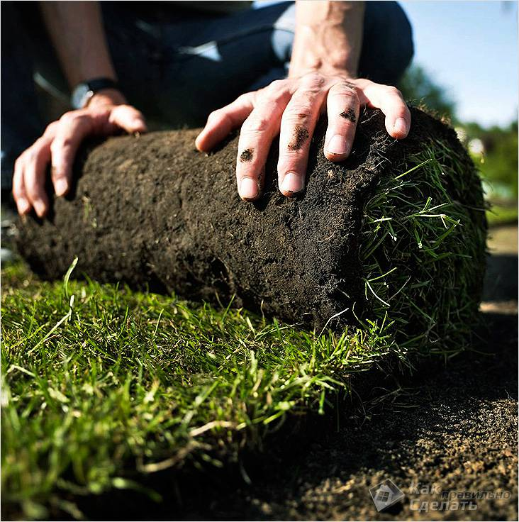 Укладка газонного рулона