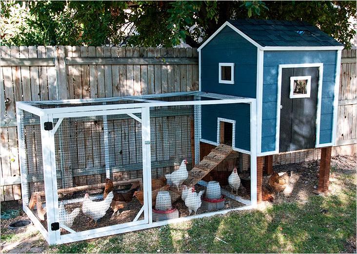 Домик для кур должен быть не только уютным внутри, но и красивым снаружи