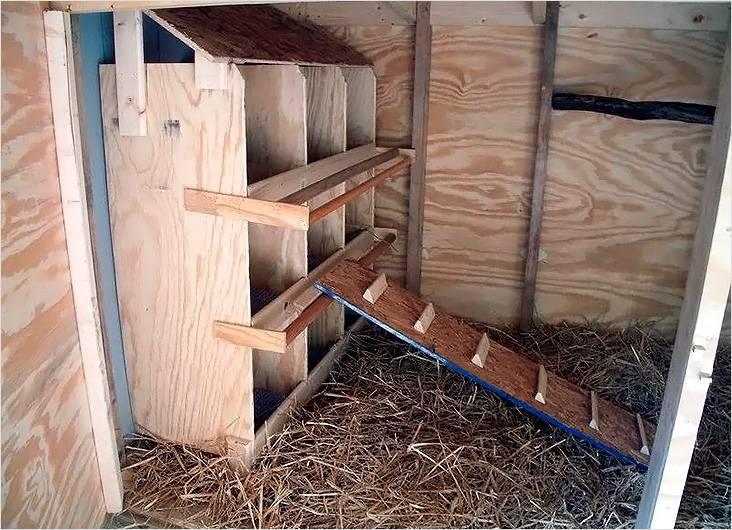 Несколько гнезд для кур-несушек