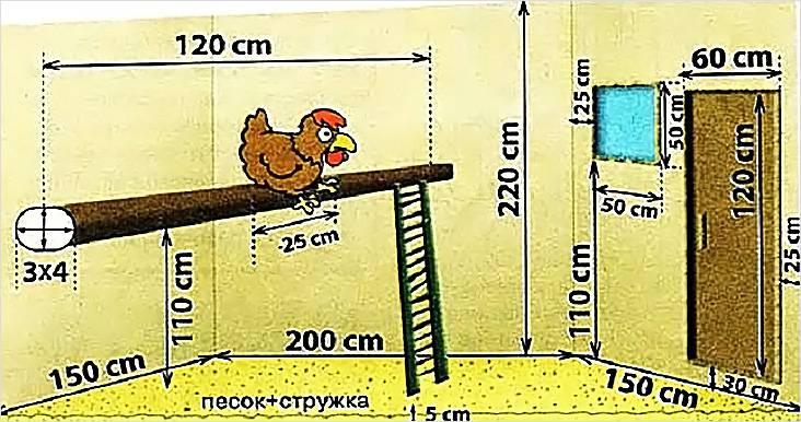 Схема расстояния между важными элементами курятника