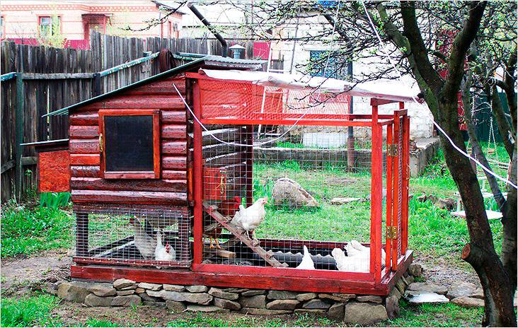 В этом небольшом курятнике свободно поместятся до 10 кур