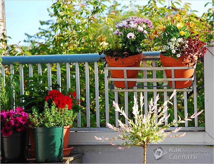 На этом балконе цветы только летом