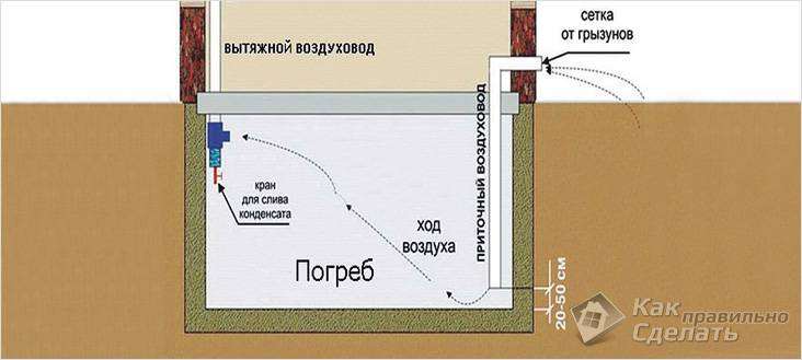 Схема вентиляции подвала/погреба