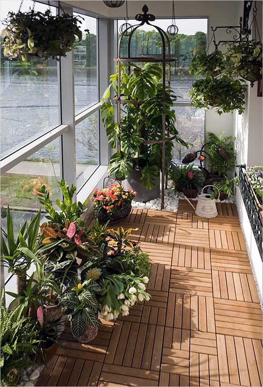 На панорамном балконе растения будут получать много света, но на солнечной стороне они могут сгореть
