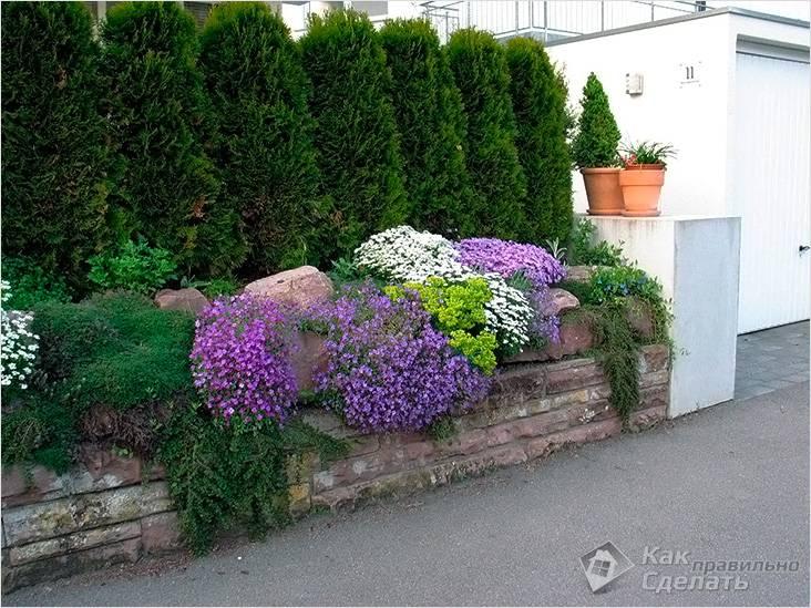 Озеленение пространства за забором