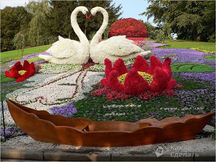 Цветущие лебеди