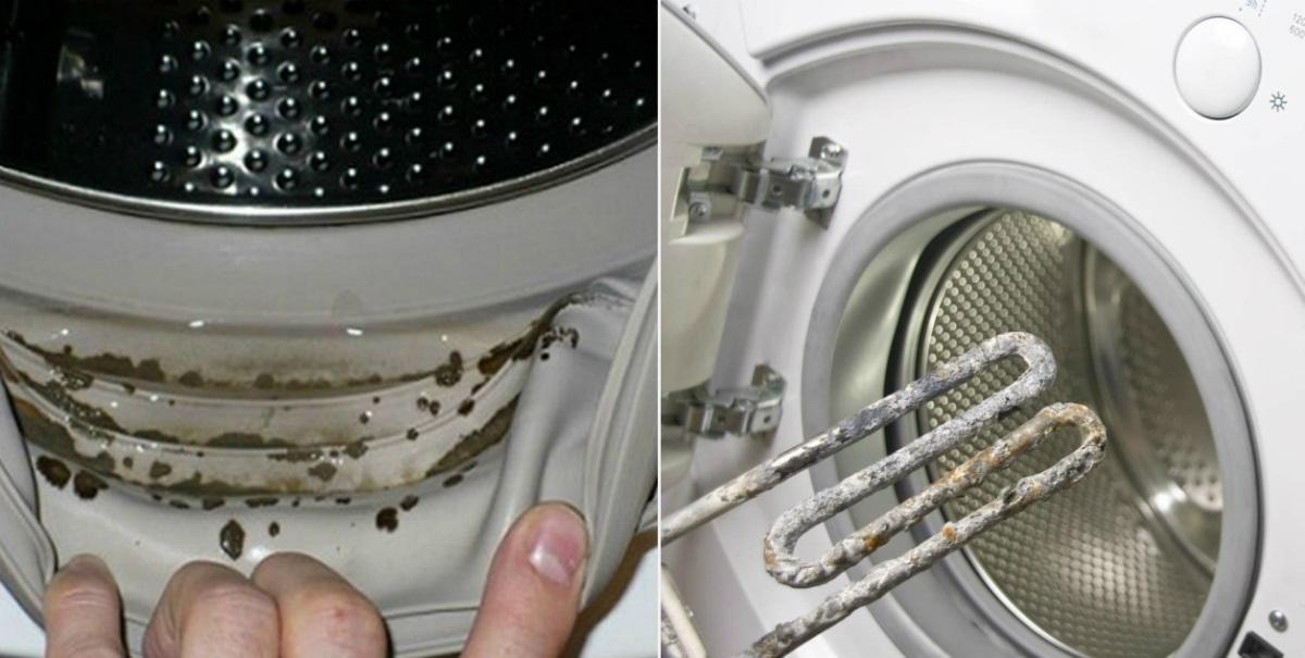 Как почистить стиральную машину автомат внутри: от грязи и запаха, от плесени, от накипи, лимонной кислотой, белизной, уксусом и содой, проверенные способы